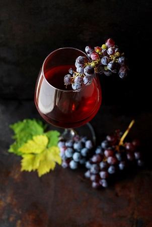 degustation vin ancien
